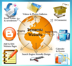 Dynamic Website Designing Company